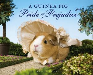 guinea pig pride